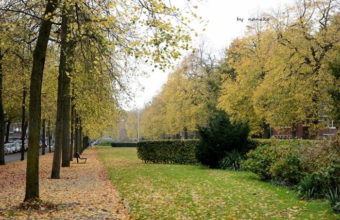 秋色のアムステルダム_a0153807_23081866.jpg