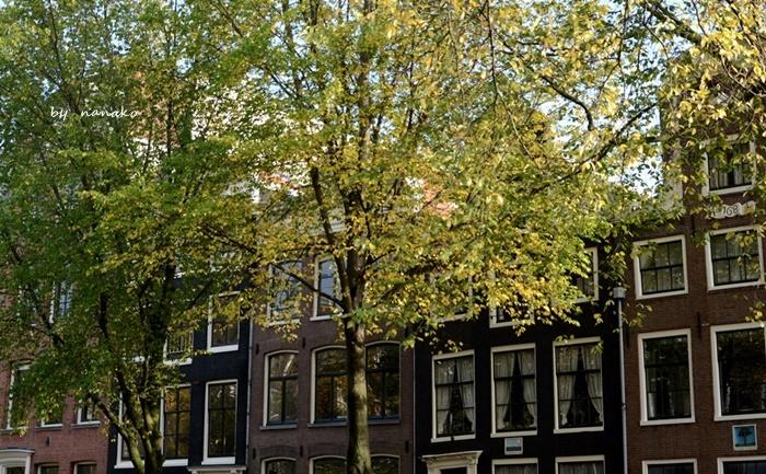 秋色のアムステルダム_a0153807_23125521.jpg