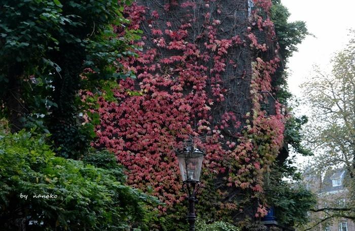 秋色のアムステルダム_a0153807_23134404.jpg