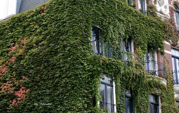 秋色のアムステルダム_a0153807_23142083.jpg