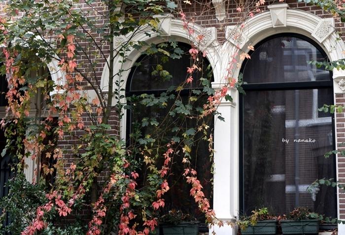 秋色のアムステルダム_a0153807_23144749.jpg