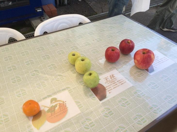 毎年恒例親睦会・リンゴ狩り&バーベキューの巻_e0036217_01530003.jpg