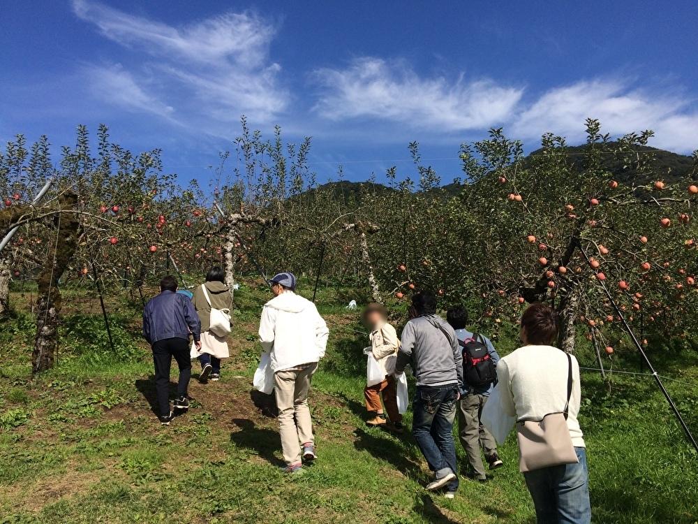 毎年恒例親睦会・リンゴ狩り&バーベキューの巻_e0036217_13090036.jpg