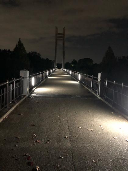 シェフェスタ奈良2019_c0113733_00060463.jpg