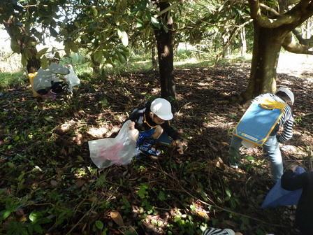 晴れました! 小学校の自然観察日和_a0123836_13240067.jpg
