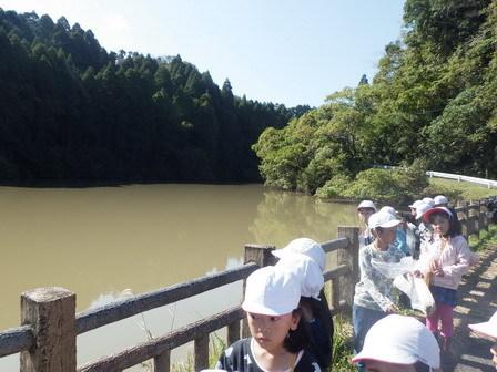 晴れました! 小学校の自然観察日和_a0123836_13240317.jpg