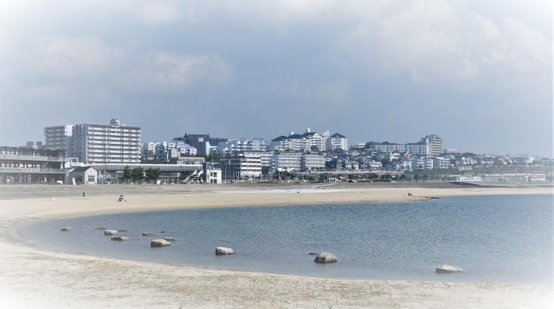 朝霧吟行帖 上 * cahier de ginko-excursion à Asagiri1_f0374041_21393236.jpg