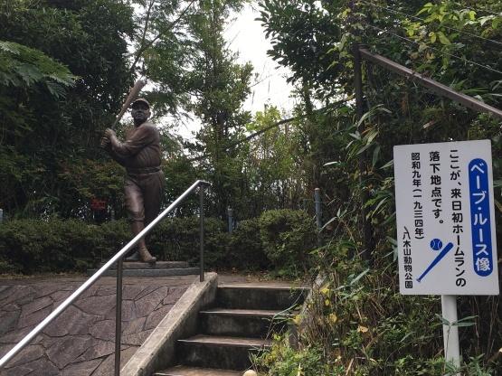 10月24日(火)八木山動物園3_b0206845_13420038.jpeg
