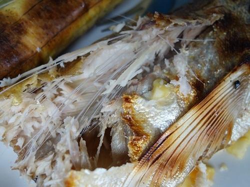 ベレン市場にて、幻の超高級魚アロワナでランチ_c0030645_09544312.jpg