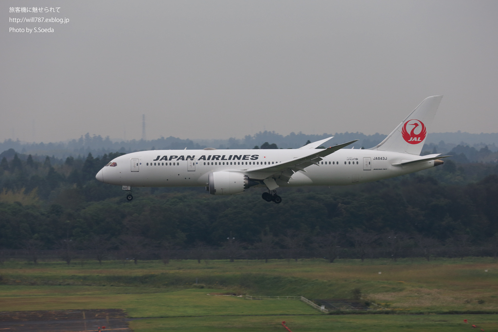 ルーク・オザワ 航空写真セミナー #2_d0242350_14305605.jpg