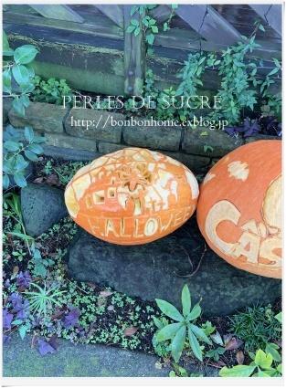 かぼちゃパトロール_f0199750_23453823.jpg
