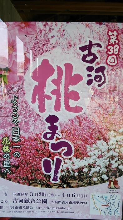 梅から桃へとまた春が近づき~_e0009056_14523460.jpg