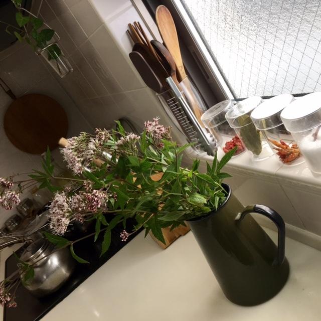 Clear autumn    庭の手入れ&キッチンのお掃除_a0165160_17020964.jpg