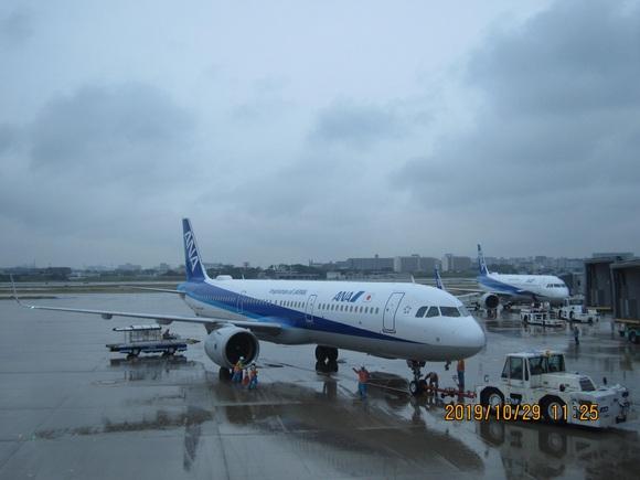NH24便 エアバス321neo_d0202264_8421155.jpg