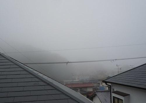 ころもがえ 夏仕舞い 冬支度_b0102572_16105601.jpg