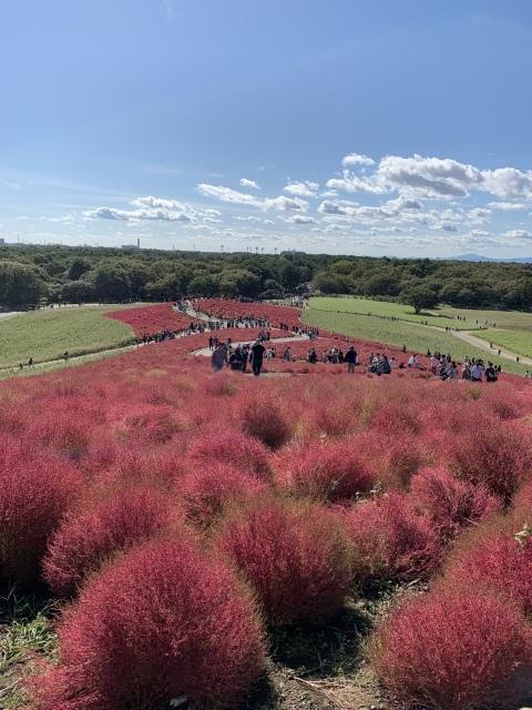 福島、茨城への旅の記録_c0274374_01365732.jpeg
