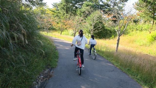 福島、茨城への旅の記録_c0274374_01382679.jpeg