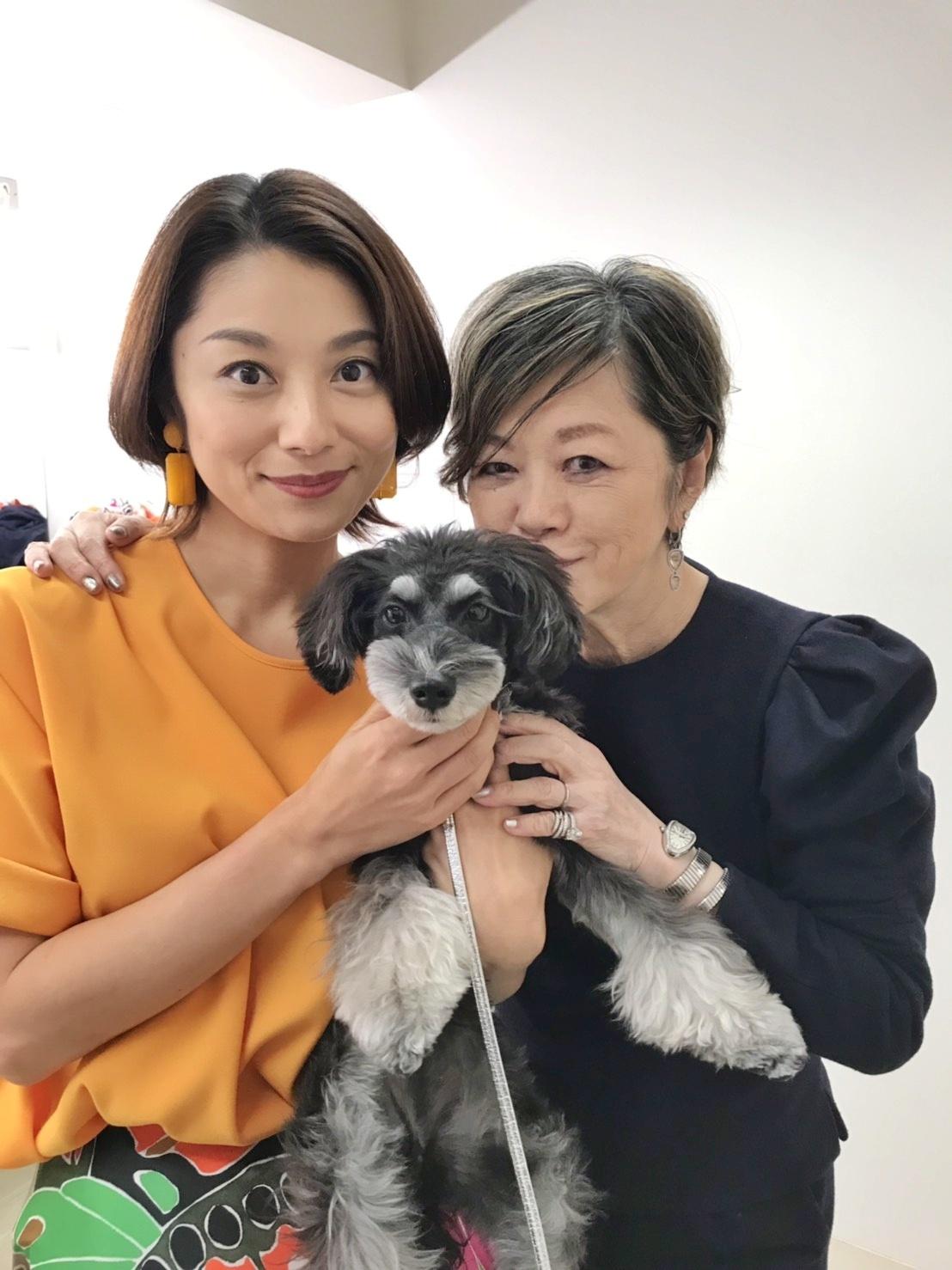 小池栄子姫主演映画『グッドバイ』番宣撮影♪_d0339889_18424830.jpg