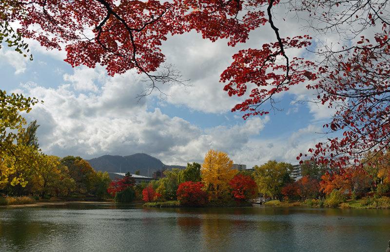 中島公園_d0162994_08402797.jpg