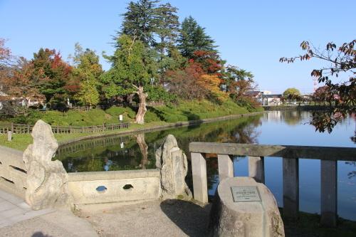 松が岬公園の朝、2019.10.31_c0075701_09382388.jpg