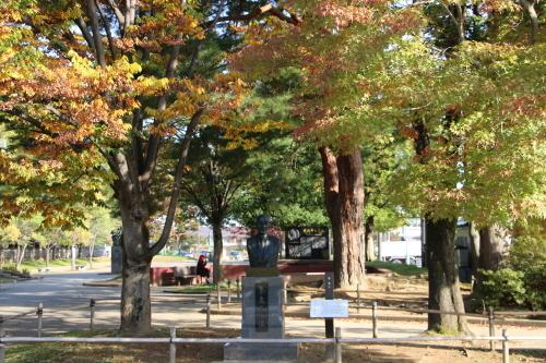 松が岬公園の朝、2019.10.31_c0075701_09390629.jpg