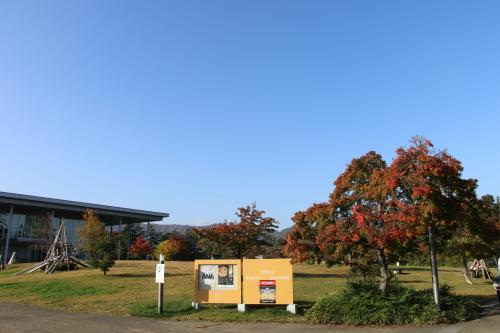 松が岬公園の朝、2019.10.31_c0075701_09390906.jpg