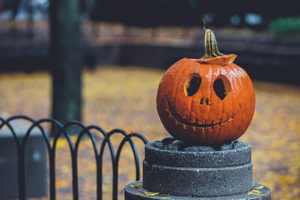 Autumn NY 2019_a0274805_23411864.jpg