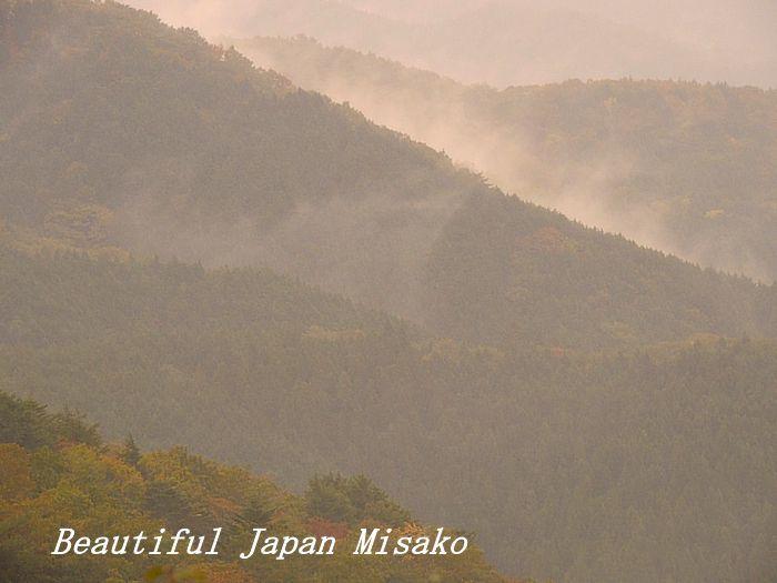 雨が降り、雲が湧く・゚☆、・:`☆・・゚・゚☆。。茶臼山 愛知県 10月29日_c0067206_14101914.jpg