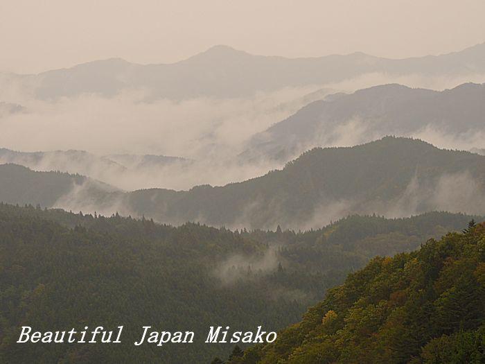 雨が降り、雲が湧く・゚☆、・:`☆・・゚・゚☆。。茶臼山 愛知県 10月29日_c0067206_14102481.jpg