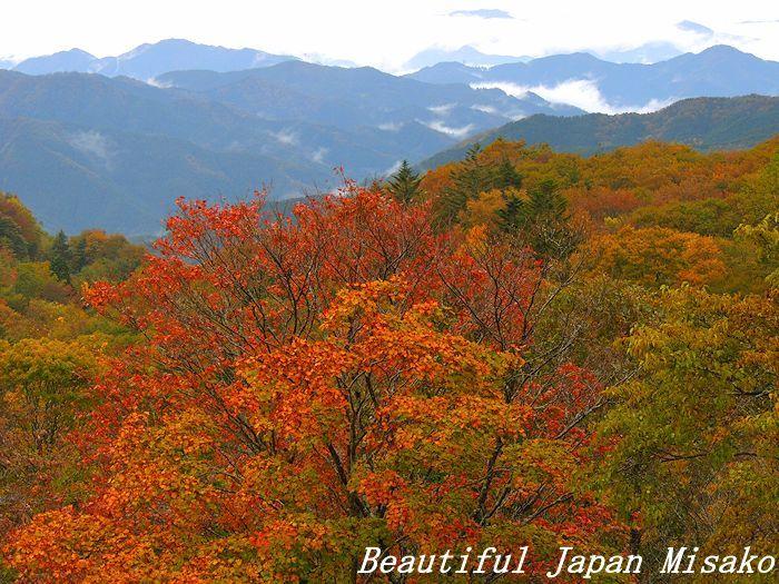秋彩の茶臼山・゚☆、・:`☆・・゚・゚☆。。10月29日_c0067206_16374398.jpg