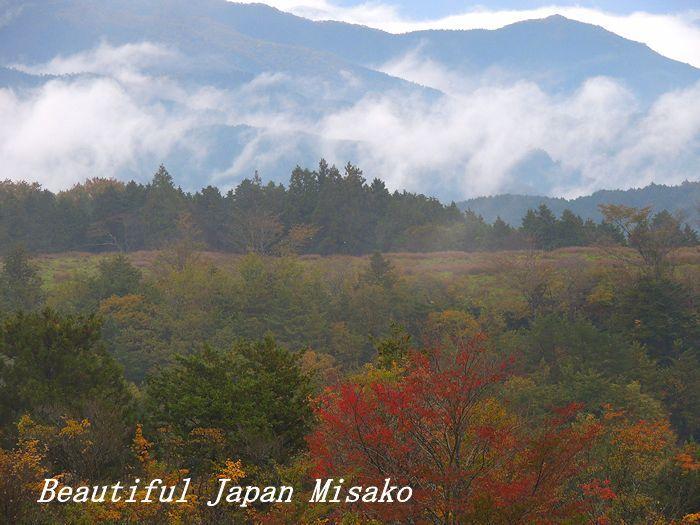 秋彩の茶臼山・゚☆、・:`☆・・゚・゚☆。。10月29日_c0067206_16374877.jpg