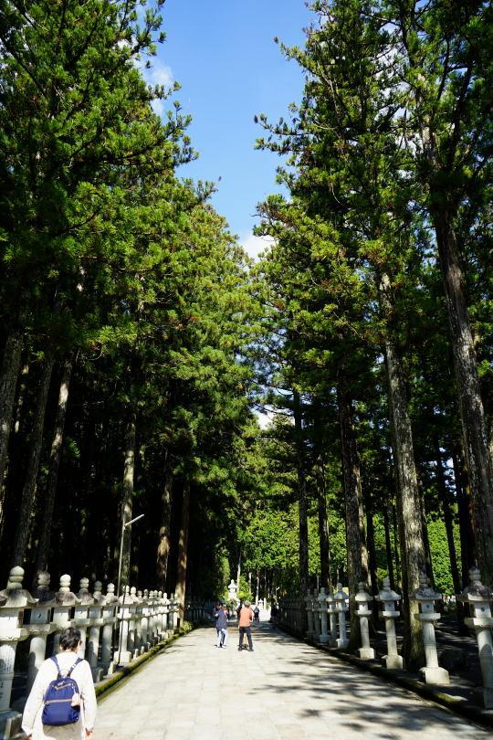 高野山へ_a0136507_21345057.jpg