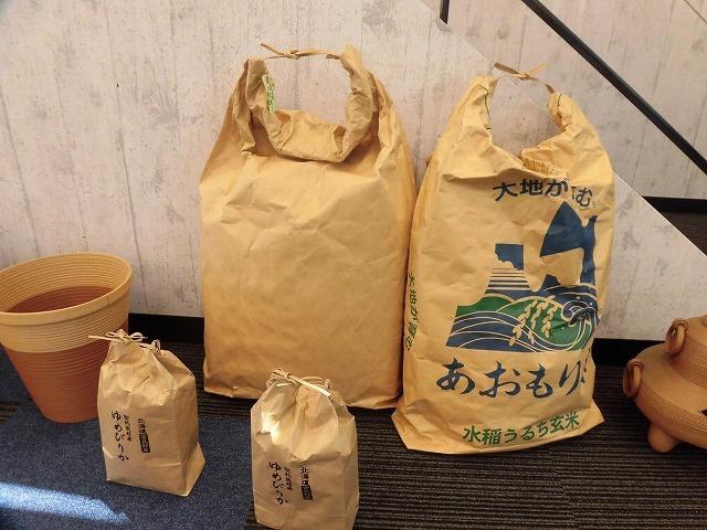 植田産業さんの紙バンドミュージアム「パピエス」で「ハロウィーン作品展」_f0141310_08101777.jpg