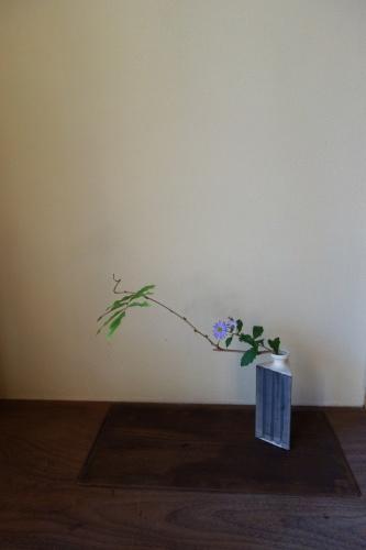 藤蔓に野紺菊_a0197730_23284143.jpg