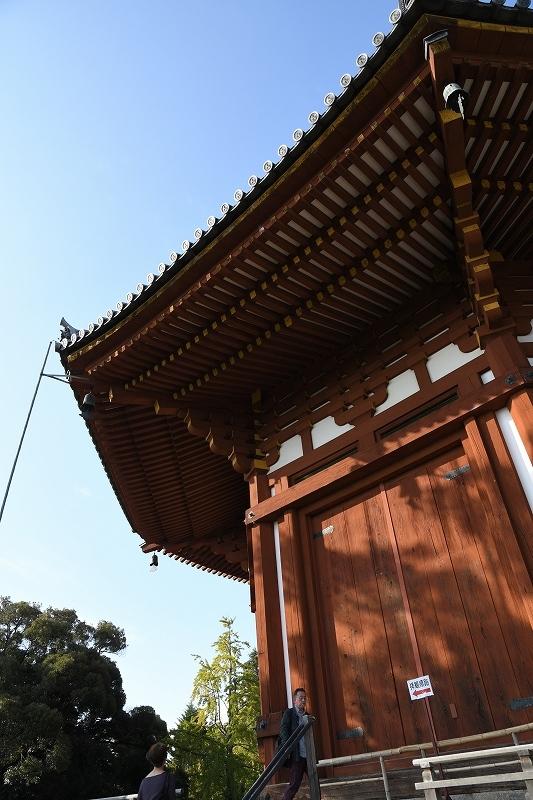南円堂_e0374932_06293543.jpg