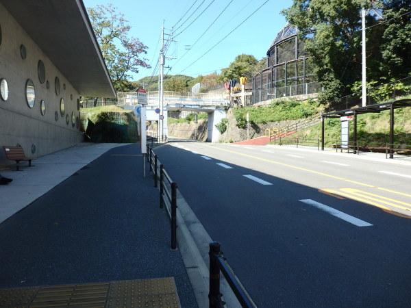 久しぶりに福岡市動物園に行ってきました。_f0337554_18184241.jpg