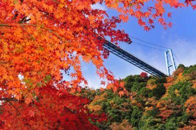 晩秋の名所竜神大吊橋へ行って来ました(^O^)/_e0009056_12533662.jpg