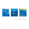 YESトリビュート・バンドでマニアに知られたTIM MORSEがソロ第三弾をリリースしていたのを、今頃ご紹介。_c0072376_19000498.jpg