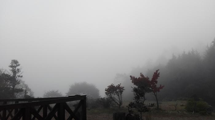 濃霧_a0199979_19264351.jpg