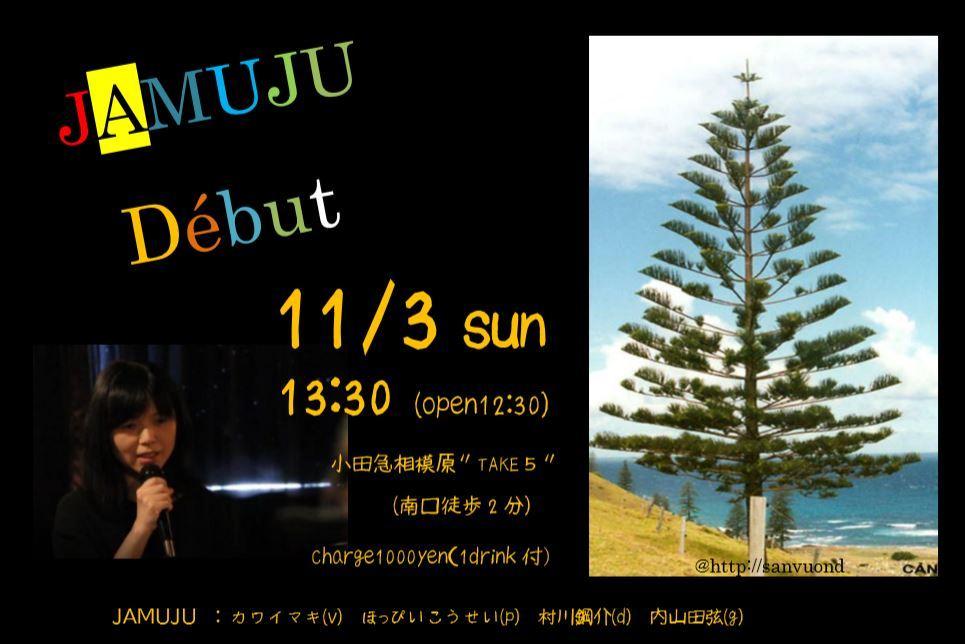"""カワイマキバンド \""""JAMUJU\"""" 「秋ライブ」_a0163788_21475811.jpg"""