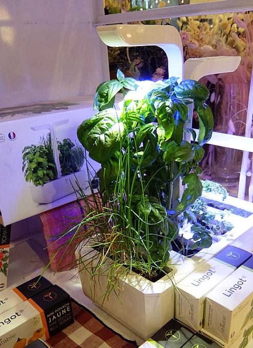 『室内で新鮮な野菜やハーブを育てる』のは世界的なトレンドかも?_b0007805_10454603.jpg