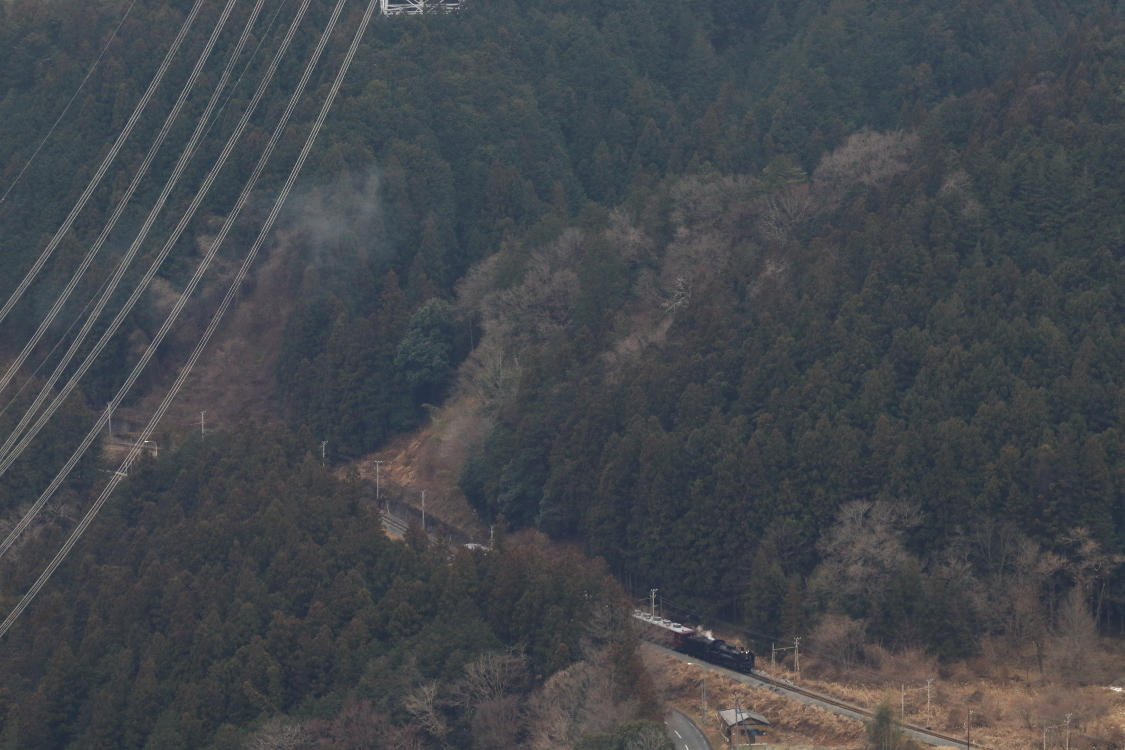 曇り空の日に山を下る汽車 - 2019年・秩父鉄道 -_b0190710_20563062.jpg