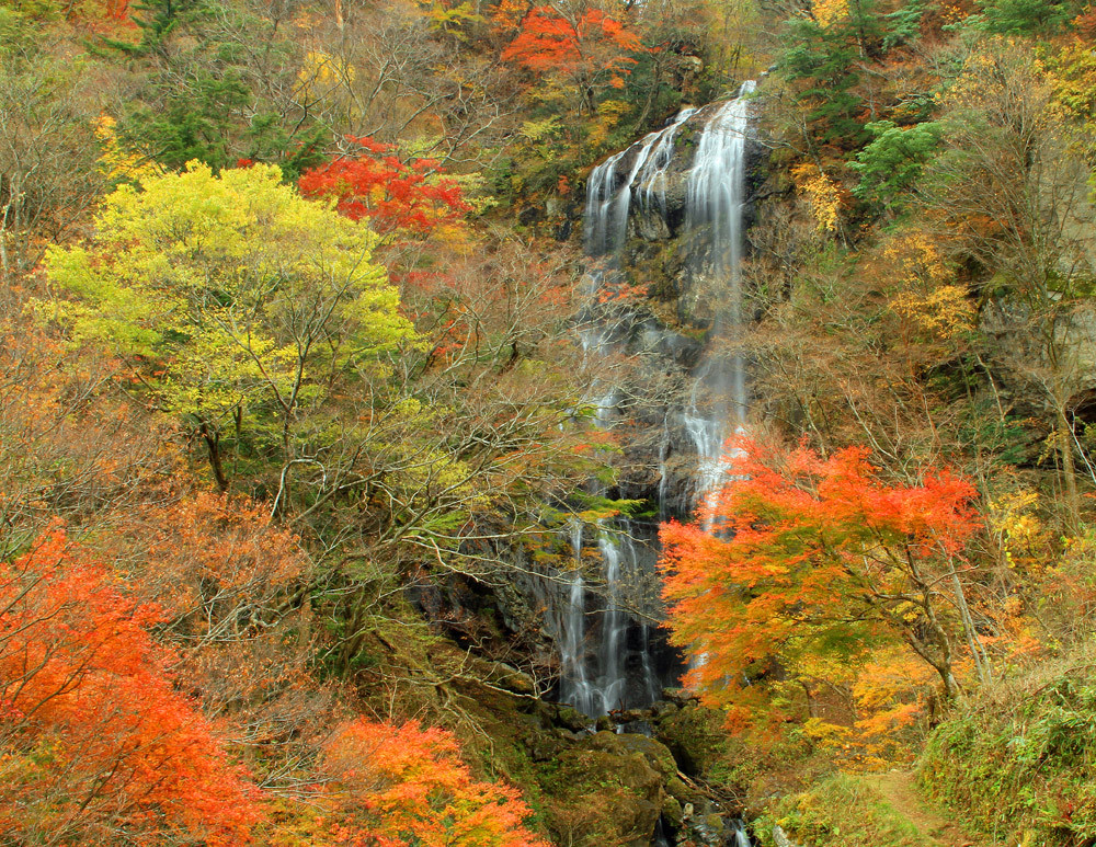 秋。_b0044115_00041810.jpg