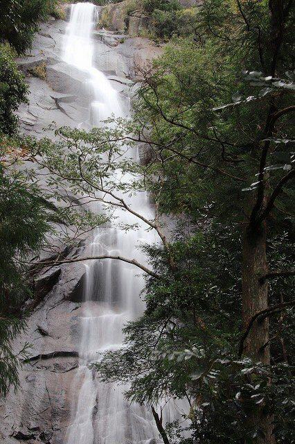 雨上がりの清滝(撮影:10月27日)_e0321325_11271952.jpg