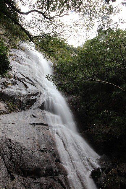 雨上がりの清滝(撮影:10月27日)_e0321325_11274056.jpg