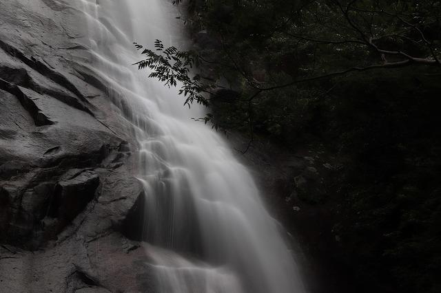 雨上がりの清滝(撮影:10月27日)_e0321325_11283264.jpg