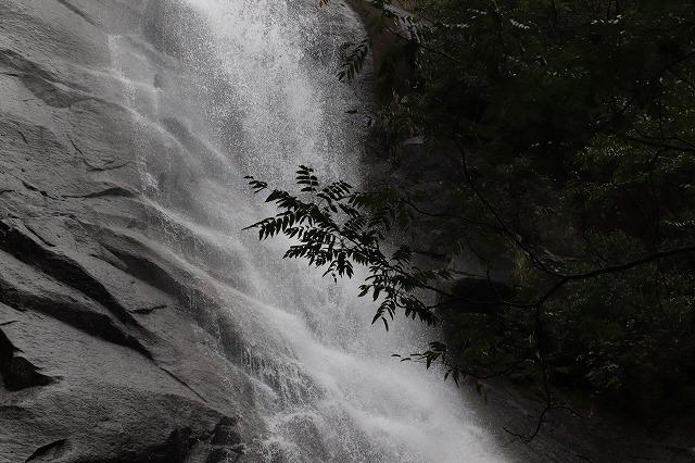 雨上がりの清滝(撮影:10月27日)_e0321325_11284991.jpg