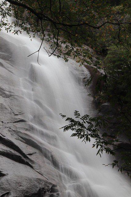 雨上がりの清滝(撮影:10月27日)_e0321325_11290883.jpg