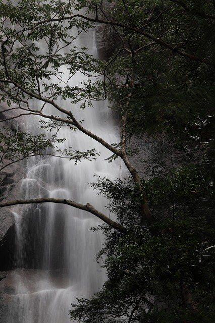 雨上がりの清滝(撮影:10月27日)_e0321325_11292300.jpg