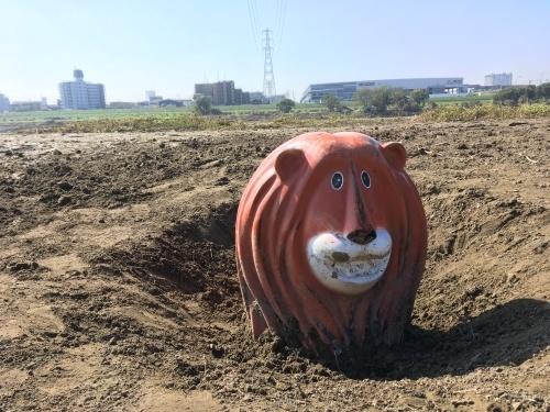 【号外】獅子太郎イリュージョン 多摩川氾濫 泥脱出_f0203027_11490308.jpg